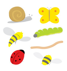 insect bug snail ladybird butterfly bee cartoon vector image vector image