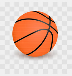 basketball ball isolated on transparent checkered vector image vector image