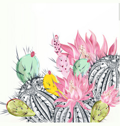beautiful with cactus plants vector image