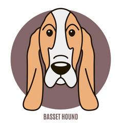 portrait basset hound vector image
