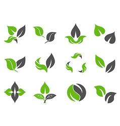 green leaves design icons vector image vector image