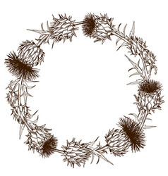 Decorative wreath with onopordum acanthium vector