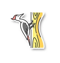 Woodpecker patch vector