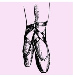 ballerina legs shoes vector image