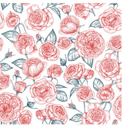 elegant seamless pattern with blooming provence vector image