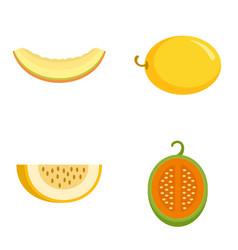 Melon icons set flat style vector