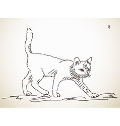 Sketch of cat vector