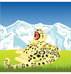 Snow leopard on nature vector image