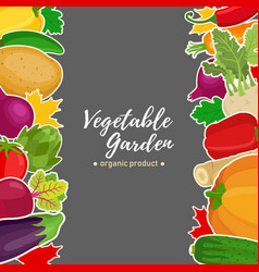 vegetable set background for voucher vector image