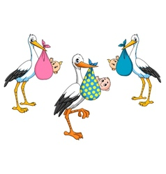 Cute cartoon storks carrying babies vector image