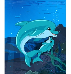Swimming Dolphins vector image