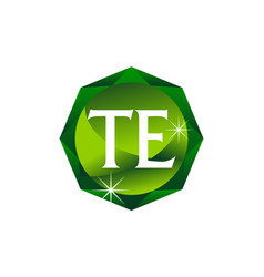Letter te diamond vector