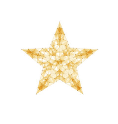 Modern star background vector