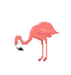 pixel art flamingo isolated on white background vector image