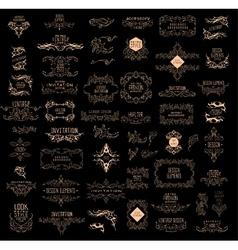 Set of elegant calligraphic design vector image