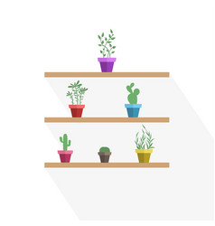 potted plants vector image