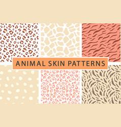 animal seamless pattern set vector image