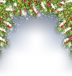 Holiday Decoration with Fir Branches and Holly vector image