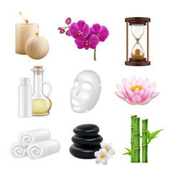 spa realistic beauty and relax salon alternative vector image