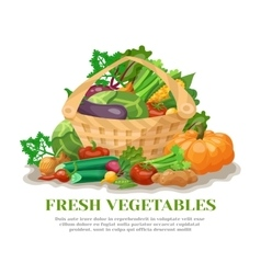 Vegetables Basket Still Life vector image
