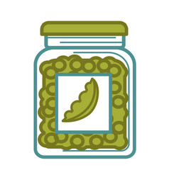 Preserved green peas in glass jar isolated on vector