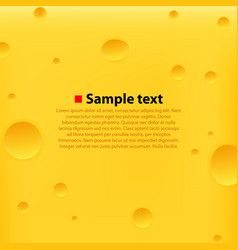 cheese yellow background vector image vector image