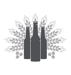 beer bottles wheat ears and malt vector image