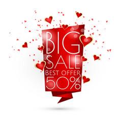 big sale banner template design vector image