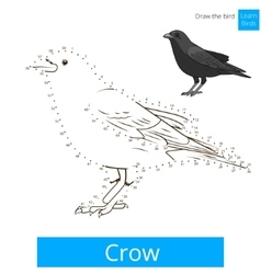 Crow bird learn to draw vector