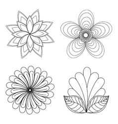 Floral design Doodle white vector