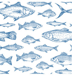 hand drawn ocean fish seamless background vector image