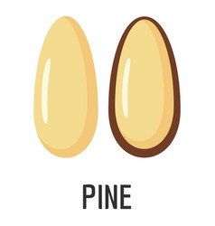 pine icon flat style vector image