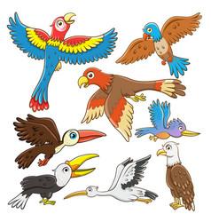 set birds cartoon vector image