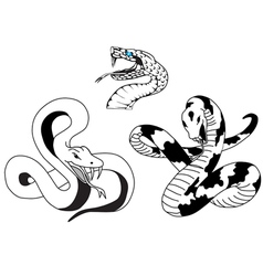 Snake tattoo vector