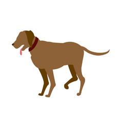 carton dog walking pet animal vector image