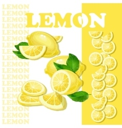 with lemon and slices isolated vector image