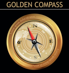 Golden compass vector