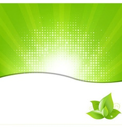 Green Background With Beams And Leaves vector image