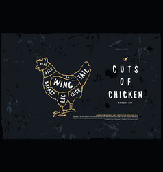 Stock chicken cuts diagram vector