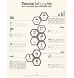 Timeline infographics with cell elements icons vector image