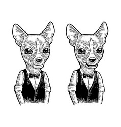 dog hipster in bow tie and shirt vintage engraving vector image vector image