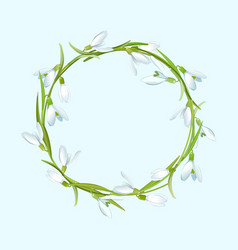 spring with snowdrops flower wreath vector image