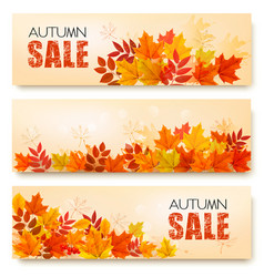 set of three autumn sale banners with colorful vector image
