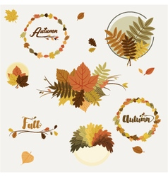 Autumn decorations vector