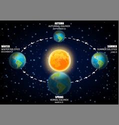diagram earth seasons vector image