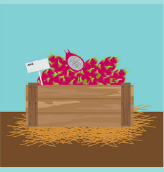 Dragon fruit in a wooden crate vector