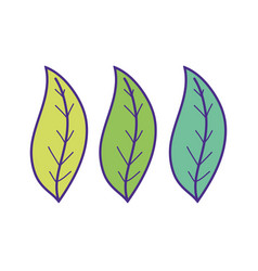 ecology leafs plants icons vector image