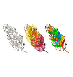 feather sketch colorful feather vector image vector image