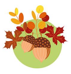 Hello autumn season acorns and leafs vector