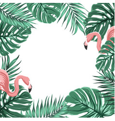 Tropical border frame leaves pink flamingo birds vector